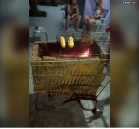They made a mobile BBQ with a shopping trolley 😂👏🏻 (@viralhog): Viral  Hoa They made a mobile BBQ with a shopping trolley 😂👏🏻 (@viralhog)