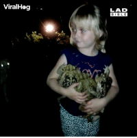 Memes, Prince, and Girl: ViralHog  LAD  BIBL E Just a girl hugging her toads, hoping one turns into a prince... 🐸👑