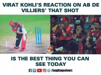 Best, Today, and Indianpeoplefacebook: VIRAT KOHLI'S REACTION ON AB DE  VILLIERS' THAT SHOT  Jio  Jio  LAUGHING  IS THE BEST THING YOU CAN  SEE TODAY  R 。回參/laughingcolours #ViratKohli #AbDeVilliers #RCBvDD
