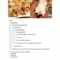 Children, Fucking, and Gryffindor: virgno:  haveitjoeway  themaddfeministDeactivated:  jen-jen-jen-jen:  soundssimpleright:  coolthingoftheday  Adorable Japanese hamster bread.  Source)  Are you fucking kidding me.  there's no way in hell I could take a bite out of these  It has a butthole  I'd take these to the petstore and just start eating them in front of children  And here you see in order a Gryffindor  Hufflepuff  Ravenclaw  And Slytherin https://t.co/OvQ6mu6AQ2
