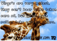 #VIRGO ♍: virgoos are very modesto  they canot bear  be taken  care ofo b  Much  rather Sake ca  otherso #VIRGO ♍