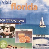 Juice, Memes, and Death: visit  TOP ATTRACTIONS  GIANT RAT  TREE JUICE  OCEAN DEATH  Travel  Packages  from  $499 I'm sold