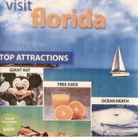 Juice, Death, and Florida: visit  TOP ATTRACTIONS  GIANT RAT  TREE JUICE  OCEAN DEATH  Travel  Packages  from  $499 Come visit Florida!
