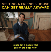 Family, Friends, and Memes: VISITING A FRIEND'S HOUSE  CAN GET REALLY AKWARD  since I'm a doggy who  sits on the floor now! Every family is different. Some more than others.