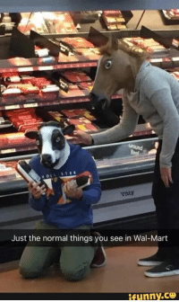walmart, ground, beef, cow: Vitty  Just the normal things you see in Wal-Mart walmart, ground, beef, cow