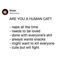 Stolen meme dump. Judge me.: Vivian  @suchnerve  ARE YOU A HUMAN CAT?  - naps all the time  - needs to be loved  - done with everyone's shit  always wants snacks  might want to kill everyone  cute but will fight Stolen meme dump. Judge me.