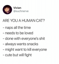 vivian: Vivian  @suchnerve  ARE YOU A HUMAN CAT?  naps all the time  needs to be loved  done with everyone's shit  always wants snacks  might want to kill everyone  - cute but will fight