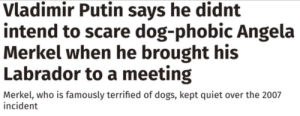 Dogs, Facepalm, and Lmao: Vladimir Putin says he didnt  |intend to scare dog-phobic Angela  Merkel when he brought his  Labrador to a meeting  Merkel, who is famously terrified of dogs, kept quiet over the 2007  incident I'm sure he didn't intend to scare her. Lmao