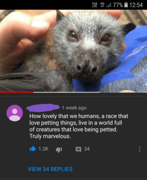 Love, Tumblr, and Blog: Vo)  LTE  4G .1177%  12:54  1 week ago  How lovely that we humans, a race that  love petting things, live in a world full  of creatures that love being petted  Truly marvelous.  VIEW 34 REPLIES awesomacious:  Very wonderful.