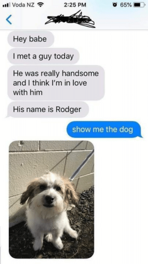 Bro already know.: Voda NZ  2:25 PM  65%  Hey babe  I met a guy today  He was really handsome  and I think I'm in love  with him  His name is Rodger  show me the dog Bro already know.