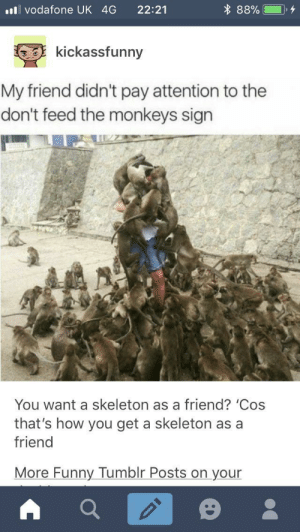 Funny, Tumblr, and Monkey: vodafone UK 4G 22:21  kickassfunny  My friend didn't pay attention to the  don't feed the monkeys sign  You want a skeleton as a friend? 'Cos  that's how you get a skeleton as a  friend  More Funny Tumblr Posts on your Monkey pals