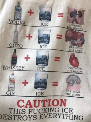 Fucking, Brain, and Heart: VODKA  DESTROYS  THE KIDNEYS  ICE  DESTROYS  OUZO  ICE  1  ICE  DESTROYS  THE HEART  WHISKEY  DESTROYS  THE BRAIN  GIN  ICE  CAUTION  THIS FUCKING ICE  ESTROYS EVERYTHING