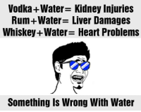 Memes, Vodka, and 🤖: Vodka+Water- Kidney Injuries  Rum +Water Liver Damages  Whiskey+Water Heart Problems  Something Is Wrong With Water
