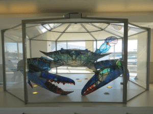 Tumblr, Baltimore, and Blog: voidy-skelecat:  yourscientistfriend:  sixpenceee:  A giant stained glass crab found at the Baltimore Washington International Airport.  Wait found. What do you mean found,  It has arrived…..