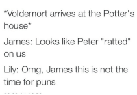 """No time for puns!: *Voldemort arrives at the Potter's  house  James: Looks like Peter """"ratted""""  On US  Lily: Omg, James this is not the  time for puns No time for puns!"""
