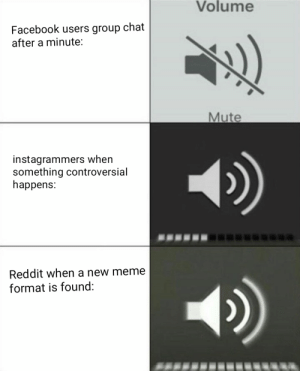 Facebook, Group Chat, and Meme: Volume  Facebook users group chat  after a minute:  Mute  instagrammers when  something controversial  happens:  Reddit when a new meme  format is found: This comparison doesn't make sense, but I'm posting it here anyways