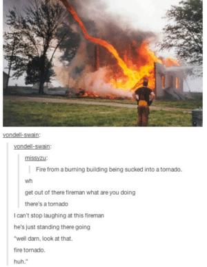 "Fire, Huh, and Tornado: vondell-swain:  vondell-swain  missyzu  Fire from a burning building being sucked into a tornado  wh  get out of there fireman what are you doing  there's a tornado  I can't stop laughing at this fireman  he's just standing there going  ""well darn, look at that.  fire tornado.  huh."" Well darn, look at that."