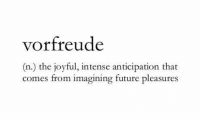 anticipation: vorfreude  (n.) the joyful, intense anticipation that  comes from imagining future pleasures