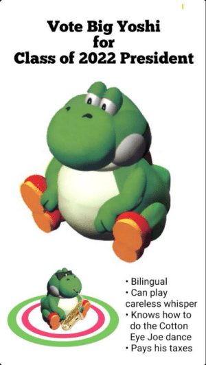 Taxes, Yoshi, and How To: Vote Big Yoshi  for  Class of 2022 President  Bilingual  Can play  careless whisper  Knows how to  do the Cotton  Eye Joe dance  Pays his taxes Hi