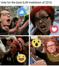 Which was the best?: Vote for the best SJW meltdown of 2016 Which was the best?