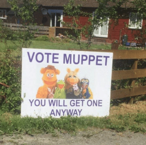 muppet: VOTE MUPPET  YOU WILL GET ONE  ANYWAY