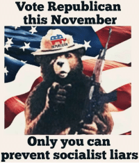Memes, Socialist, and 🤖: Vote Republican  this November  REPUBLICAN  Only you can  prevent socialist liars