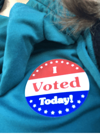 God, Being Salty, and Blue: Voted  Today! .*
