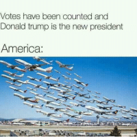 America, Memes, and Canada: Votes have been counted and  Donald trump is the new president  America: Canada here we come.