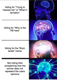 "<p>How voting for &ldquo;meme of the month&rdquo; is going rn</p>: Voting for ""Trying to  impress her"" or ""What in  tarnation""  Voting for ""Why is the  FBI here""  Voting for the ""Brain  levels"" meme  Not voting then  complaining how the  winner does not  represent the users  opinions <p>How voting for &ldquo;meme of the month&rdquo; is going rn</p>"