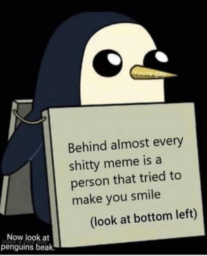 awesomesthesia:  This is a shitty meme: Voure gay  Behind almost every  shitty meme is a  person that tried to  make you smile  (look at bottom left)  Now look at  Have  penguins beak. awesomesthesia:  This is a shitty meme
