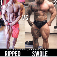 Clothes, Facebook, and Gym: VS  1G  LE G IONSPR O D U CTI0 N  RIPPED SWOLE 🔥😳🤔WHICH DO YOU PREFER? Founder 👉: @king_khieu. 1 - Ripped. 2 - Swole. 1 or 2? Why-why not? Vote 👇 below! Thoughts? 🤔 What do you guys think? COMMENT BELOW! Athletes. 1 - @fitnesslopehs. 2 - @falby1. TAG SOMEONE who needs to lift! _________________ Looking for unique gym clothes? Use our 10% discount code: LEGIONS10🔑 on Ape Athletics 🦍 fitness apparel! The link is in our 👆 bio! _________________ Principal 🔥 account: @fitness_legions. Facebook ✅ page: Legions Production. @legions_production🏆🏆🏆.