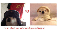 Soviet, April, and Soviet Union: VS  its an all out war between doggo and pupper! The Soviet Union invades Finland (April 30th, 1939)