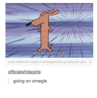 Girls, Omegle, and The Powerpuff Girls: VVIENER ATTACK!  www.tokomon tumblr.com/tagged/the- powerpuff girls  officialwhitegirls:  going on omegle im tired
