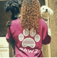 Thanks @smiley_dog_vacation for the support in our maroon tribal shirt ! Want to be seen by hundreds of thousands of people???? Just order at PawzShop.com then message us your BEST photo of you, your shirt and your dog !🐶🐾 All short sleeves are still buy 1 get 1 half off 🐶: W2 Thanks @smiley_dog_vacation for the support in our maroon tribal shirt ! Want to be seen by hundreds of thousands of people???? Just order at PawzShop.com then message us your BEST photo of you, your shirt and your dog !🐶🐾 All short sleeves are still buy 1 get 1 half off 🐶