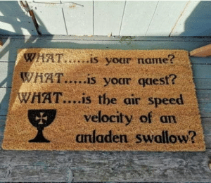laughoutloud-club:  It's a coconut mat: WAAT..is your name?  WHAT...is your qaest?  WAAT....is the air speed  velocity of an  anladen swallow? laughoutloud-club:  It's a coconut mat