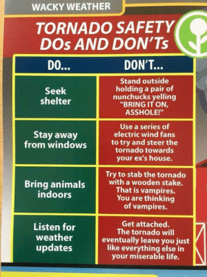 "Animals, Dank, and Ex's: WACKY WEATHER  TORNADO SAFETY  DOs AND DON'Ts  DON'T...  DO...  Stand outside  holding a pair of  nunchucks yelling  ""BRING IT ON,  Seek  shelter  ASSHOLE!""  Use a series of  electric wind fans  Stay away  from windows  to try and steer the  tornado towards  your ex's house.  Try to stab the tornado  with a wooden stake.  That is vampires.  You are thinking  vampires.  Bring animals  indoors  Get attached.  The tornado will  eventually leave you just  like everything else in  your miserable life.  Listen for  weather  updates Just a PSA for everyone in Alabama/ Georgia by sadie609 FOLLOW 4 MORE MEMES."