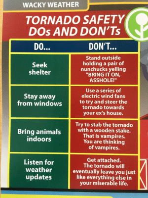 """Animals, Ex's, and Life: WACKY WEATHER  TORNADO SAFETY  DOs AND DON'Ts  DON'T...  Stand outside  holding a pair of  nunchucks yelling  """"BRING IT ON,  ASSHOLE!""""  Seek  shelter  Use a series of  electric wind fans  Stay away  from windowsto try and steer the  tornado towards  your ex's house.  Try to stab the tornado  with a wooden stake.  That is vampires.  You are thinking  of vampires.  Bring animals  indoors  Listen for  weather  updates  Get attached.  The tornado will  eventually leave you just  like everything else in  your miserable life. Tornado Safety: DOs and DON'Ts"""