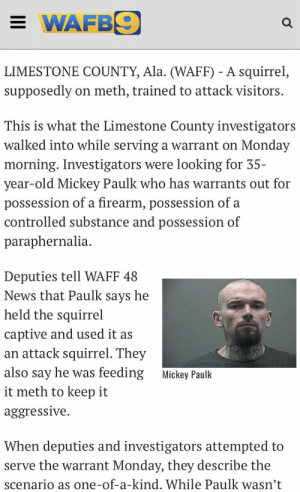 News, Trash, and Squirrel: = WAFB9  LIMESTONE COUNTY, Ala. (WAFF) - A squirrel,  meth, trained to attack visitors  supposedly  on  This is what the Limestone County investigators  walked into while serving a warrant on Monday  morning. Investigators were looking for 35-  year-old Mickey Paulk who has warrants out for  possession of a firearm, possession of a  controlled substance and possession of  paraphernalia  Deputies tell WAFF 48  News that Paulk says he  held the squirrel  captive and used it as  an attack squirrel. They  also say he was feeding  Mickey Paulk  it meth to keep it  aggressive  When deputies and investigators attempted to  serve the warrant Monday, they describe the  scenario as one-of-a-kind. While Paulk wasn't White trash man had an attack squirrel, fed it meth to keep it aggressive