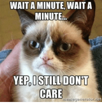 Grumpy Cat, Ets, and Yep: WAIT A MINUTE,  WAIT A  MINUTE...  YEP, I STILL DONT  CARE  meme generator et