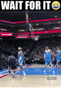 Memes, State Farm, and 🤖: WAIT FOR IT  State Farm  @HBAMENES Vince Carter deserves an Oscar for reenacting Blake Griffin's flop. https://t.co/5hcH6Lx6eo
