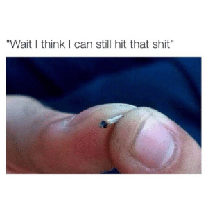 """Hit That: """"Wait I think I can still hit that shit"""""""