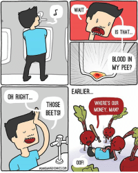 Urine for a treat with this throwback tbt: WAIT  IS THAT..  BLOOD IN  MY PEE?  EARLIER  OH RIGHT  THOSE  BEETS!  WHERE'S OUPR  MONEY, MAN?  00F!  PEARSHAPEDCOMICS.COM Urine for a treat with this throwback tbt