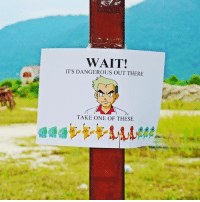 Anime, Charmander, and Dank: WAIT!  IT'S DANGEROUS OUT THERE  TAKE ONE OF THESE Which one would you take? 😋 - Sent in by FunnyPokemonAmbassador @Jay_deeee_ ! Thanks! ___________ Want to become an official Funny Pokemon Ambassador too? Then DM us your best and funniest pokemon memes to feature 😀 ___________ pokemon nintendo anime art geek deviantart naruto funny comics pikachu meme playstation dankmemes pokemoncards followme gamer charizard pokemontcg dank pokemongo pokemonx squirtle likeme lol disney nintendoswitch charmander