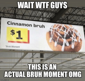 Bruh, Omg, and Wtf: WAIT WTF GUYS  Cinnamon bruh  $1  Bruh Moment  THISIS AN  ACTUAL BRUH MOMENT OMG  imgflip.com Omg guys it really happened
