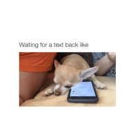 me all the time: Waiting for a text back like me all the time