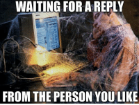 Memes, Any Minute, and 🤖: WAITING FOR AREPLY  FROM THE PERSON YOU LIKE Any minute now...