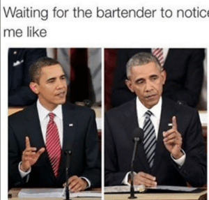 Seems to happen every time i go out to eat: Waiting for the bartender to notic  me like Seems to happen every time i go out to eat