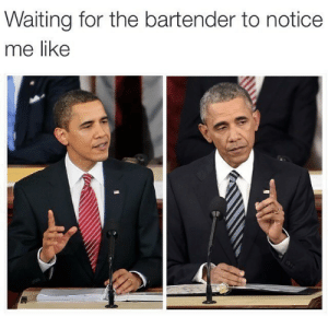 memehumor:  TGIF: Waiting for the bartender to notice  me like memehumor:  TGIF