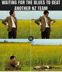 Memes, Chiefs, and Rugby: WAITING FOR THE BLUES TO BEAT  ANOTHER NZ TEAM  RUGBY  MEMES Anytime now... 😒 rugby chiefs blues superrugby