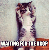 Waiting...: WAITING FOR THE DROP